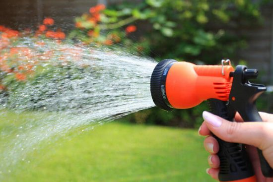 Garden hose projecting cold water helps to get rid of aphids