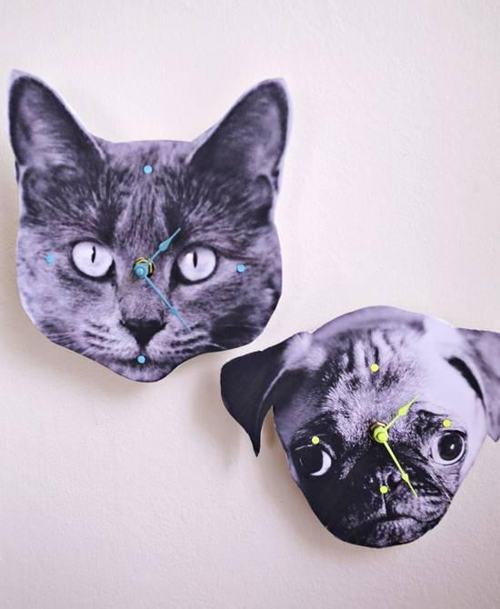DIY Pet Photo Wall Clock
