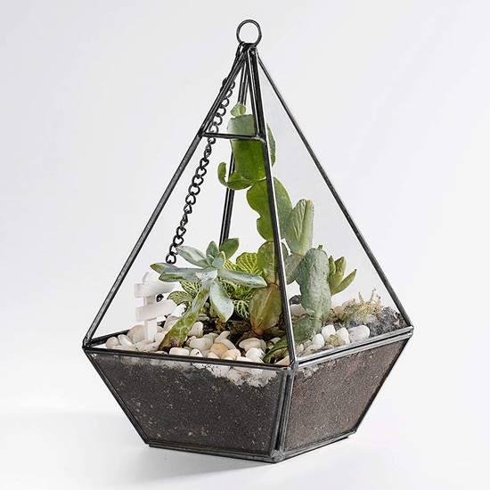 diy indoor succulent terrarium