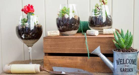 Diy wine glass terrarium