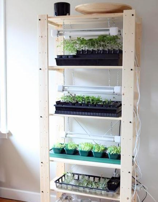 diy indoor seed starting greenhouse