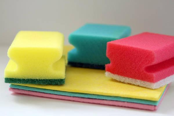 sponge absorb water
