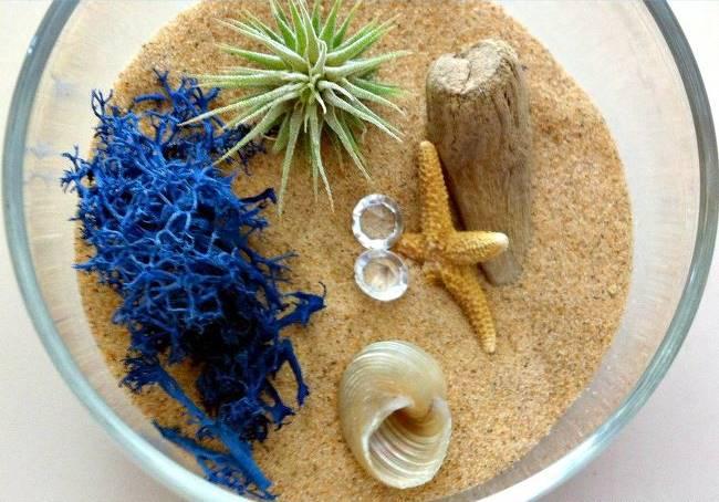 diy succulent terrarium sand