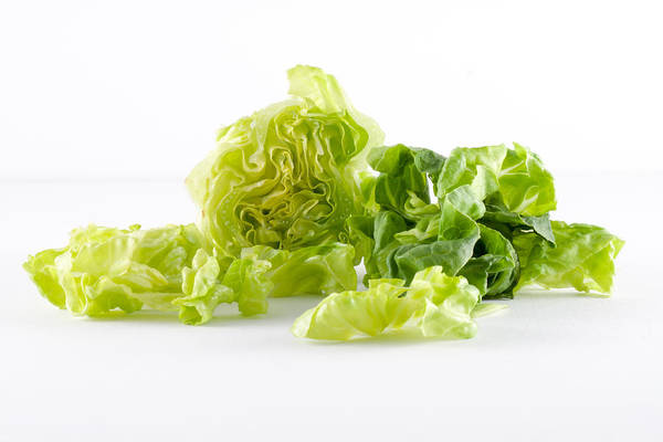 close- up of lettuce