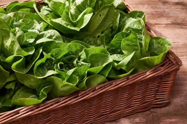spinach in a basket