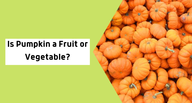 Is Pumpkin a Fruit or Vegetable?