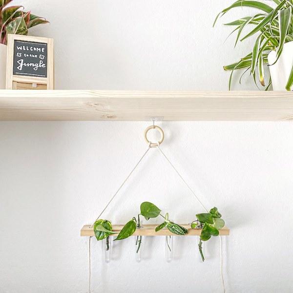 Indoor Hanging Propagation Planter