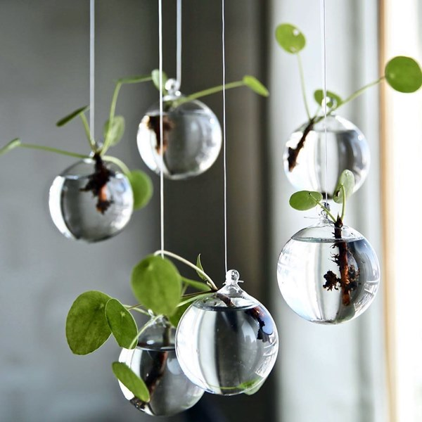 Spherical Propagation Planter