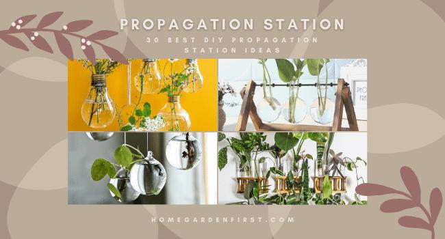 DIY Propagation station