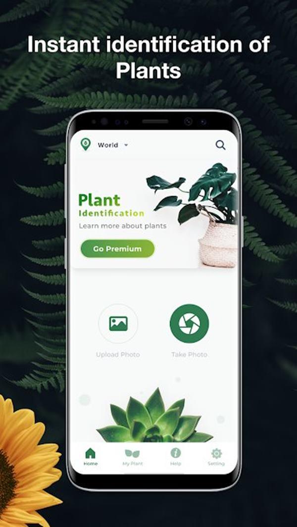 Leaf Snap gardening app