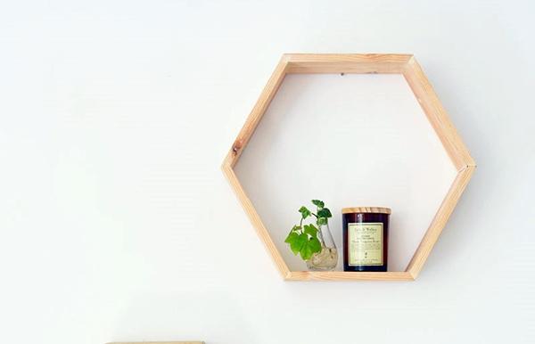 DIY Mirrored Honeycomb Propagation Station